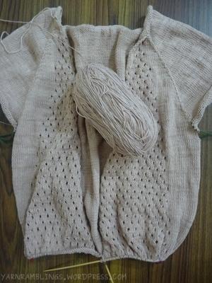 Cardigan and remaining yarn